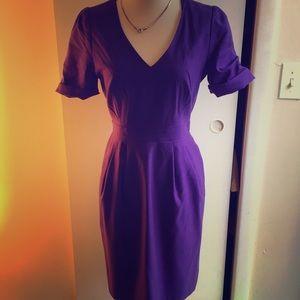 Wool lined jcrew dress